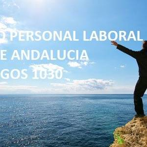 personal laboral psicologos